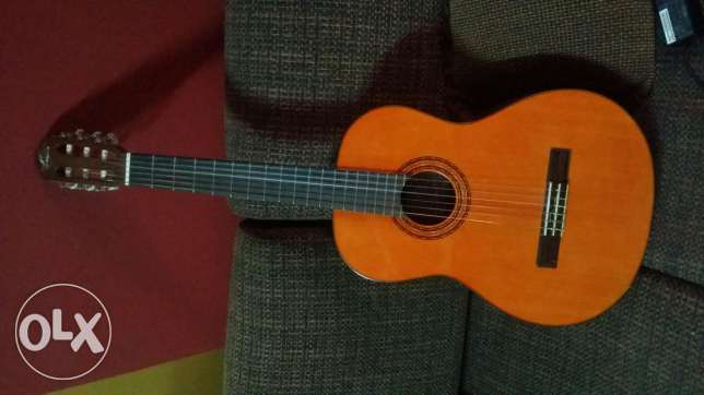 new guitar for sale