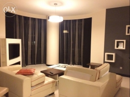 Dlx Exctv 1 bedroom fully furnished apartment