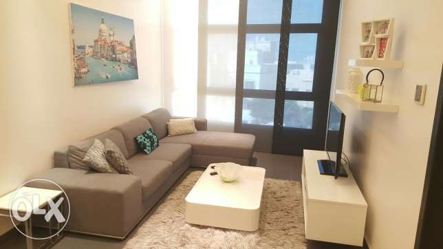 Fabulous 2 BR flat with super amenities