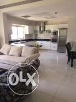 For rent luxury apartments fully furnished in Adliya