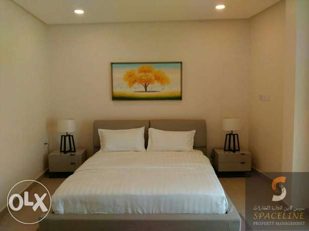 Spacious 2 bedroom fully furnished flat for rent in adliya