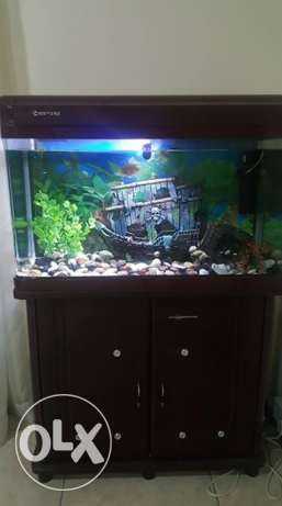 Aquarium with storage cabinetUsed for 1 year. Includes good quality fi