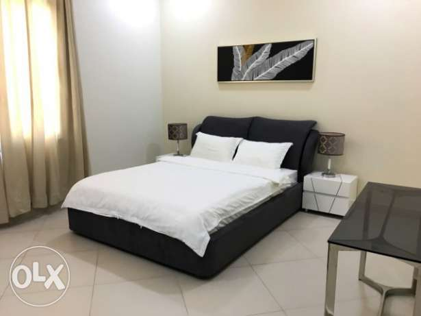 Dashing 2 Bedroom Fully Furnished Apartment For Rental In Adliya