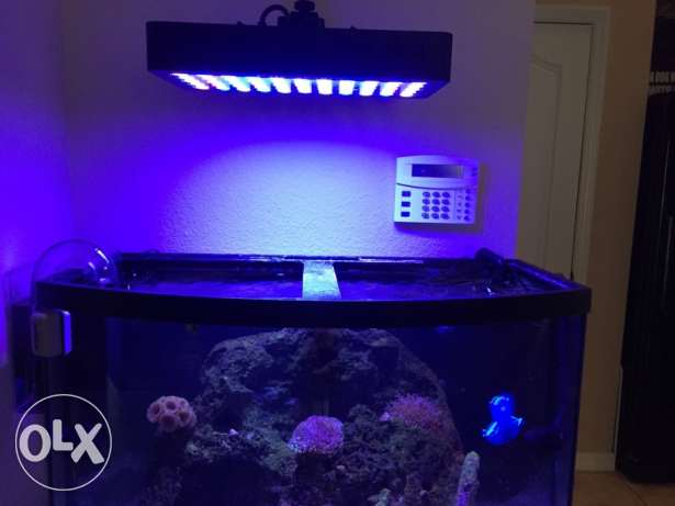 BHD 100 / Galaxy hydro wifi LED 165w coral lamp