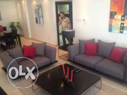 Spacious Fully Furnished 2 Bedroom Apartment for rent 650