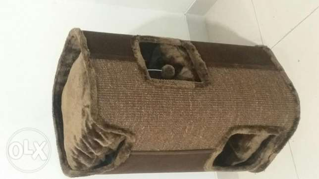 3 Cats home
