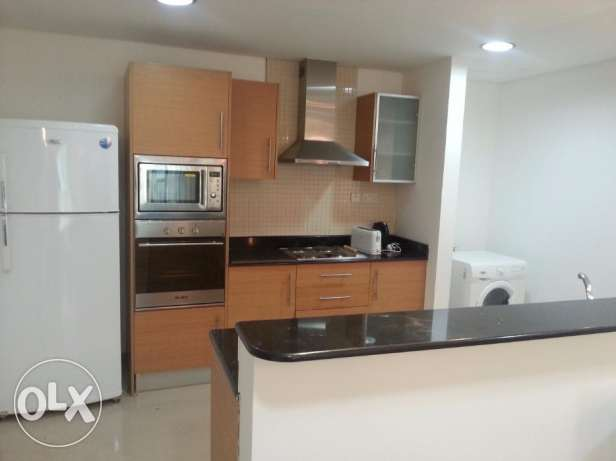 Luxurious 1 Bedroom apartment decent furniture fully furnished