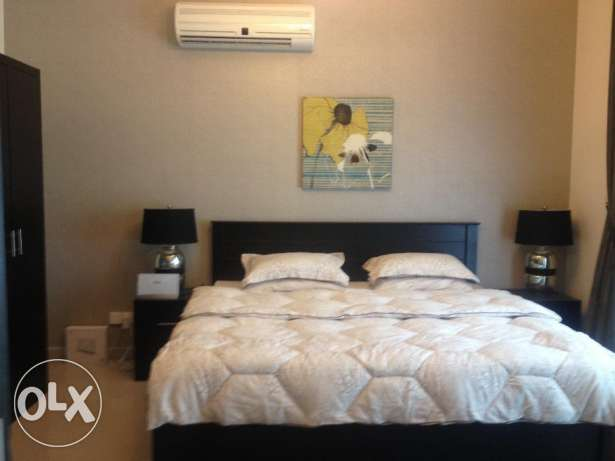 Modern Fully Furnished Apartment For Rent 380 In Zinj