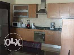 Spacious 3 Bedrooms Fully Furnished Apartment in Adiliya