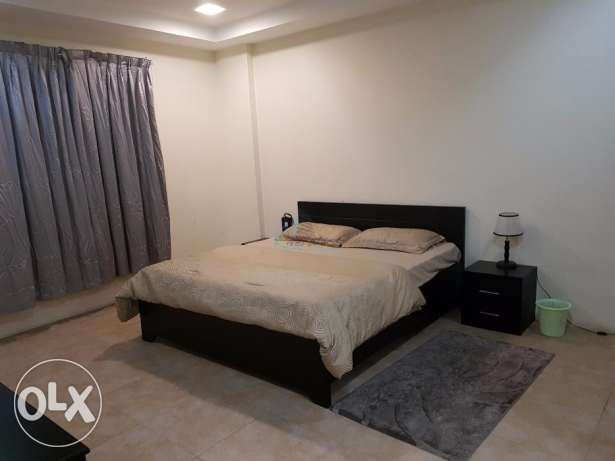 Furnished two-bedroom apartment for rent at Adliya العدلية -  5