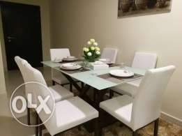 Brand New Furnished 2 BR Apartment