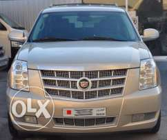 2010 Modal Cadillac Escalade Platinum For Sale