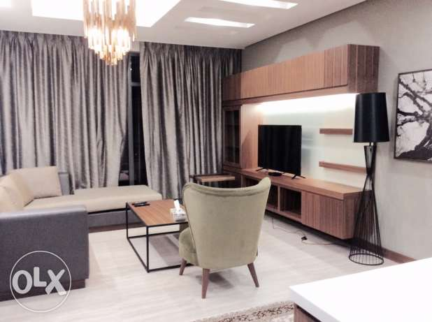 Brand new executive 1 bedroom furnished apartment