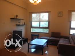 Modern Fully Furnished Apartment For Rent 480 in Zinje