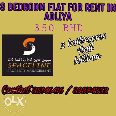 3 bedroom flat for rent in Adliya