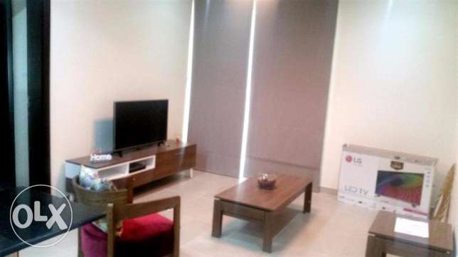 Unique Brand New Furnished Flat For Rent (Ref No:34JFZ)