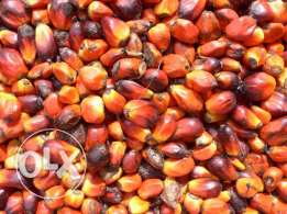 Refined and Crude palm oil and sunflower oil