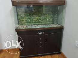 Aquarium with water purifying filter.