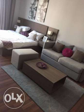 4Fully furnished luxury Studio/Flat for rent in The NEST TOWER – Manam