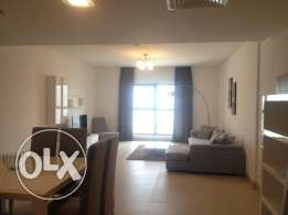 Absolutely Stunning 2br Luxury Apartment rent 750