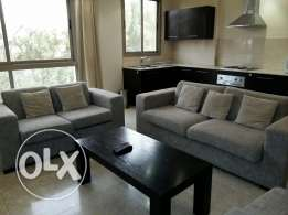 2 bedroom fully furnished apartment in adliya//with facilities