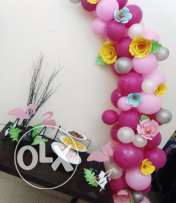 Balloon Chef - Events,Parties,Exhibits Decorates