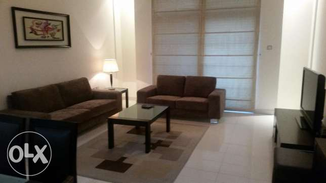 Modern and stylish two bedroom furnished luxury apartment available