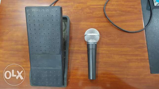 volume pedal+microphone