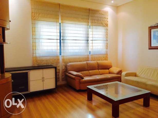 1 bedroom fully furnished apartment.