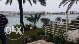 On the lagoon 3 Bedrooms flat with maid's room for sale - Free hold