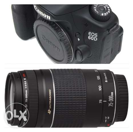 camera 60d and lens canan kit75-300