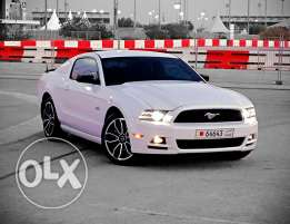 2014 Mustang 5.0 ( SOLD )