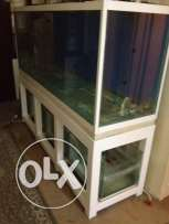 Marine Aquarium 19mm thick glass with SUMP and Metal Stand
