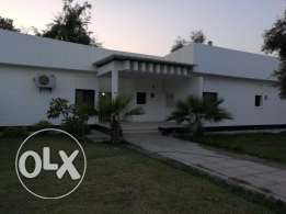3 bedroom villa for rent with splendid greenery at Jannusan