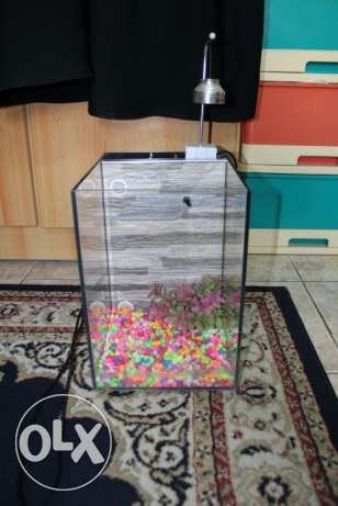 Aquarium For Sale 15 BD