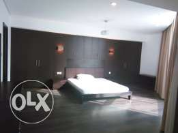Fully Furnished 2 & 3 BR Flat For Rent