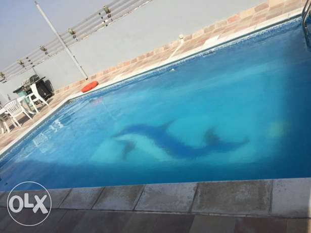 Semi furnished 2 BR with pool & gym