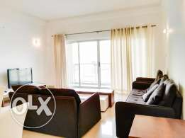 Fully Furnished Luxurious 2 BR Apartment
