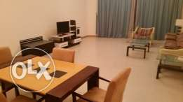 Modernly furnished spacious & bright apartment