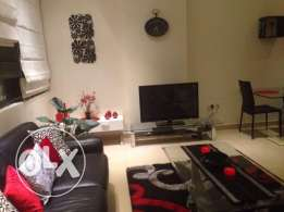 Modern & Beautifully Furnished 1 BR Apartment