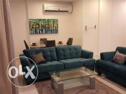 brand new 2 bedroom fully furnished stylish apartment