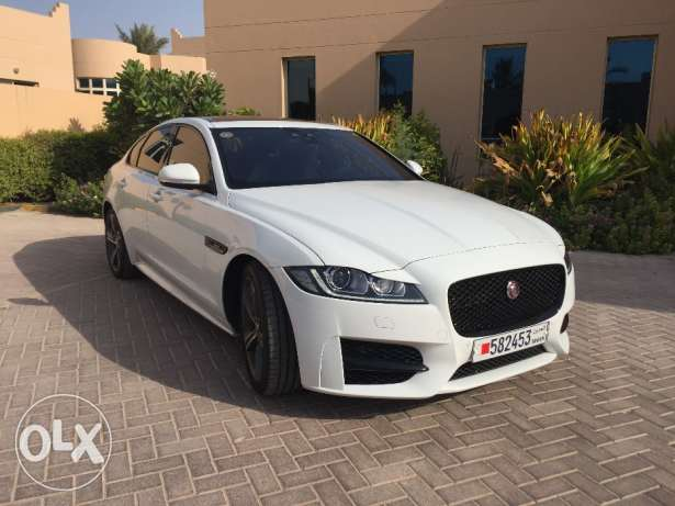 Jaguar XF R-Sport for sale