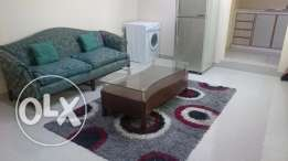 Furnished studio flat for rent in Muqsha (available from 1st Feb 17