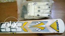 SS Josh cricket bat and original gloves