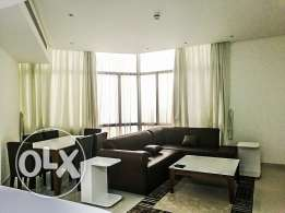 New Modern Luxurious Furnished 1 BR Apartment
