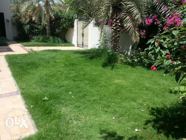 Huge stand alone 4 bed room villa for rent in ADLIYA