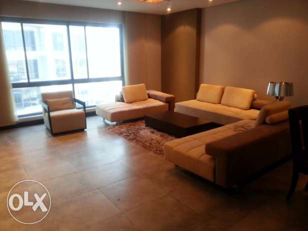 Luxurious 2 Bedrooms apartment with decent furniture fully furnished
