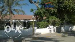 SAAR Luxury 4 BR SF Single Storey Villa with Private Garden