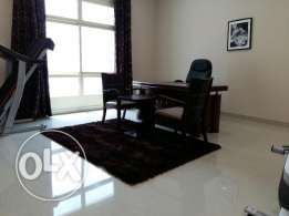 2 bhk stunning apartment fully furnished in Ne whidd/navy