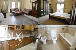 2 Bedroom fully furnished flat in Adliya